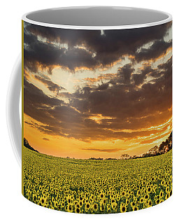 Sunflower Fields Sunset Coffee Mug