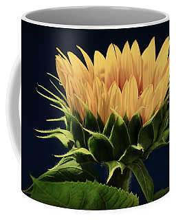 Coffee Mug featuring the photograph Sunflower Foliage And Petals by Chris Berry