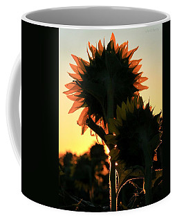 Coffee Mug featuring the photograph Sunflower Greeting  by Chris Berry
