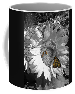 Coffee Mug featuring the photograph Sunflower In Black And White by Melinda Blackman