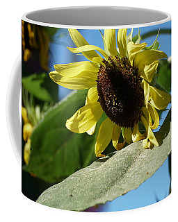 Sunflower, Lemon Queen, With Pollen Coffee Mug