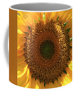 Coffee Mug featuring the photograph Sunflower  by Marna Edwards Flavell