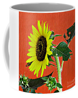 Coffee Mug featuring the photograph Sunflower On Red 2 by Sarah Loft