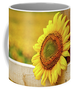 Sunflower On The Fence Coffee Mug