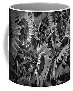 Coffee Mug featuring the photograph Sunflower Patch 001 Bw by Lance Vaughn