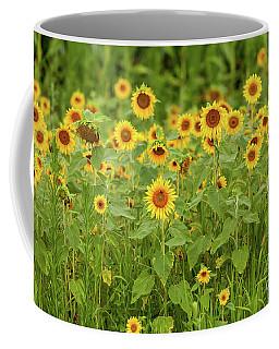 Sunflower Patch Coffee Mug