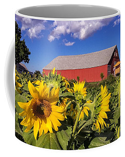 Sunflower Red Barn Coffee Mug