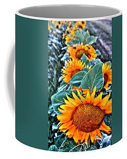 Sunflower Row Coffee Mug