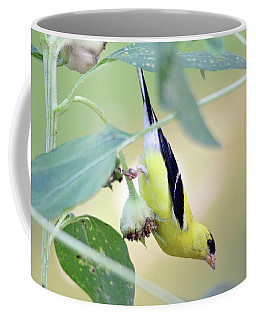Coffee Mug featuring the photograph Sunflower Seed Snack by Trina Ansel