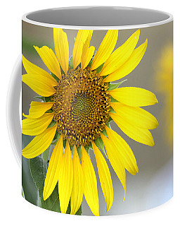 Sunflower Coffee Mug by Sheila Brown