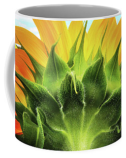 Sunflower Sunburst Coffee Mug