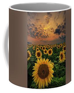 Coffee Mug featuring the photograph Sunflower Sunset  by Aaron J Groen