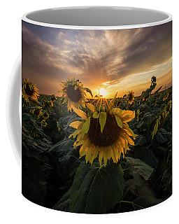 Coffee Mug featuring the photograph Sunflower Sunstar  by Aaron J Groen