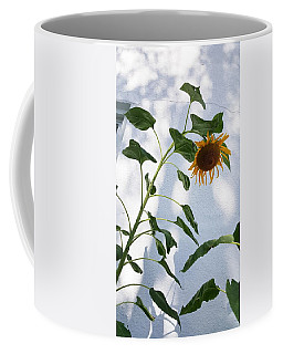 Coffee Mug featuring the photograph Sunflower Wall by Rob Hans