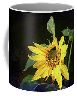 Coffee Mug featuring the photograph Sunflower With Texture by Trina Ansel
