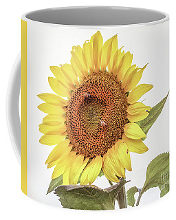 Coffee Mug featuring the photograph Sunflowers 10 by Andrea Anderegg