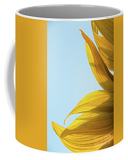 Coffee Mug featuring the photograph Sunflowers 11 by Andrea Anderegg