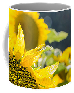 Coffee Mug featuring the photograph Sunflowers 14 by Andrea Anderegg