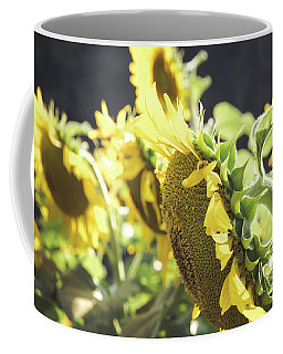 Coffee Mug featuring the photograph Sunflowers 4 by Andrea Anderegg