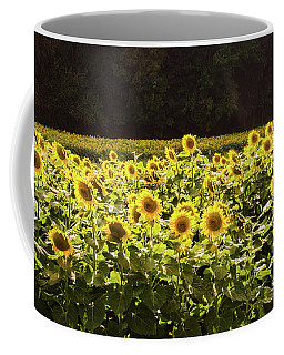 Coffee Mug featuring the photograph  Sunflowers 5 by Andrea Anderegg
