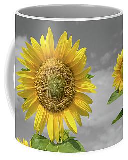 Sunflowers V Coffee Mug