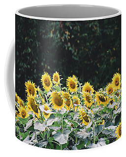 Coffee Mug featuring the photograph Sunflowers 7 by Andrea Anderegg