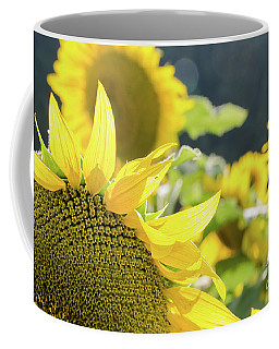 Coffee Mug featuring the photograph  Sunflowers 8 by Andrea Anderegg