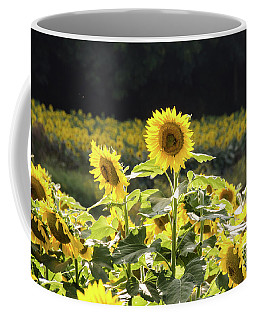 Coffee Mug featuring the photograph Sunflowers 9 by Andrea Anderegg
