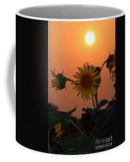 Sunflowers At Sunset Coffee Mug