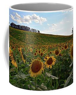 Sunflowers Fields  Coffee Mug