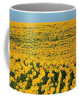 Sunflowers Galore Coffee Mug by Catherine Sherman