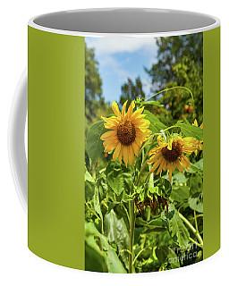 Sunflowers In Sunshine Coffee Mug