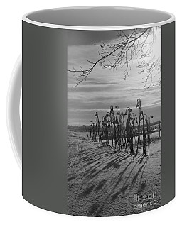 Sunflowers In The Winter Sun Coffee Mug