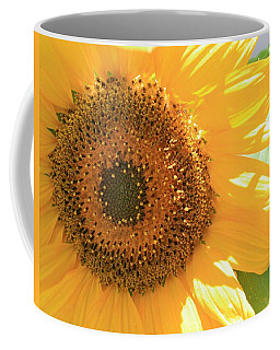 Coffee Mug featuring the photograph Sunflowers  by Marna Edwards Flavell