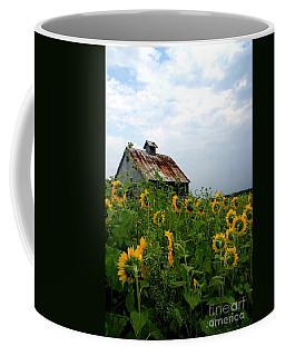 Sunflowers Rt 6 Coffee Mug