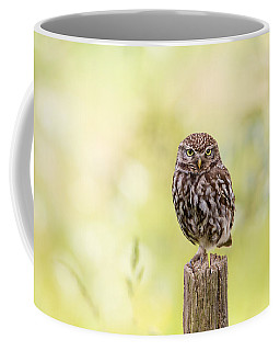 Sunken In Thoughts - Staring Little Owl Coffee Mug