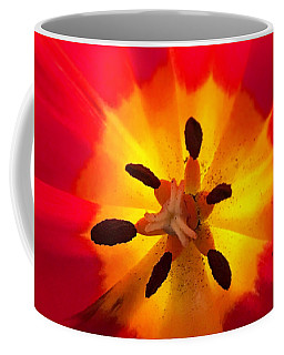 Coffee Mug featuring the photograph Sunkissed Tulips by Monique Faella