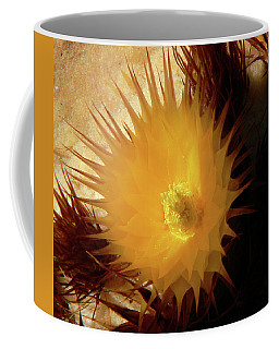 Sunlight Cactus Coffee Mug by Rosalie Scanlon
