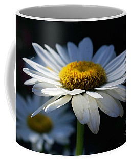 Sunlight Flower Coffee Mug by John S