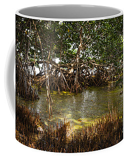 Sunlight In Mangrove Forest Coffee Mug