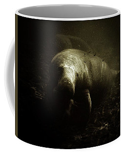 Sunlight Manatee Coffee Mug