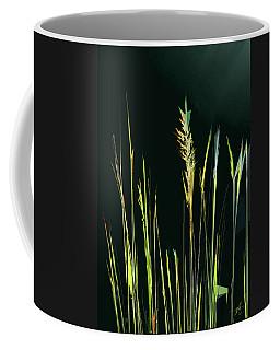 Sunlit Grasses Coffee Mug