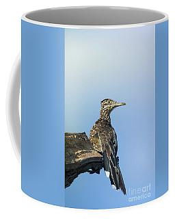 Sunning Roadrunner Coffee Mug