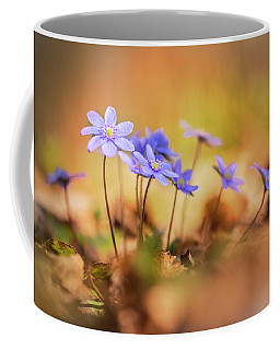 Coffee Mug featuring the photograph Sunny Afternoon With Liverworts by Jaroslaw Blaminsky