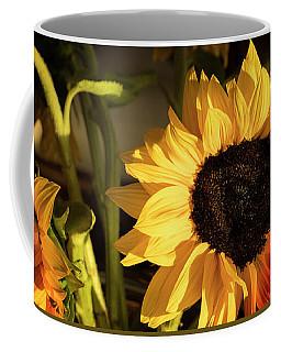 Coffee Mug featuring the photograph Sunny An Dark by Michael Hope