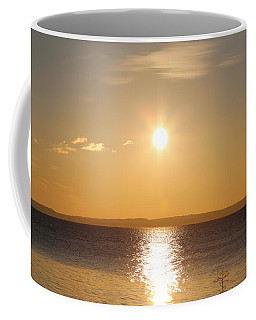 Sunny Day By The Oslo Fjords.  Coffee Mug