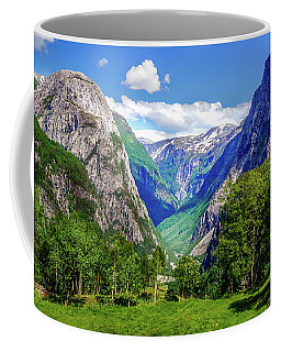 Coffee Mug featuring the photograph Sunny Day In Naroydalen Valley by Dmytro Korol