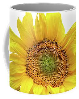 Coffee Mug featuring the photograph Sunny Flower 1 by Jenny Rainbow