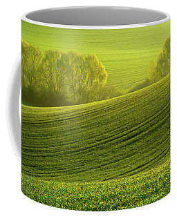 Coffee Mug featuring the photograph Sunny Green by Jenny Rainbow