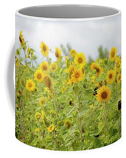 Coffee Mug featuring the photograph Sunny Roadside by Rebecca Cozart